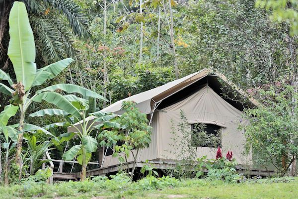 Canopy Camp, Panama