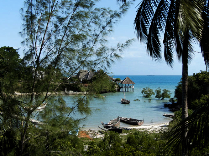Forested cove with boats Zanzibar Mangrove Ecolodge