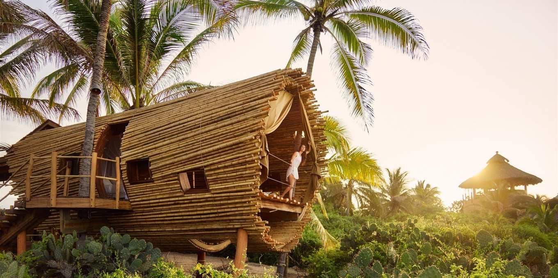 Amazing ecolodge Mexico treehouse