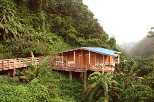 Casa Grande Mountain Retreat Puerto Rico Ecotripmatch