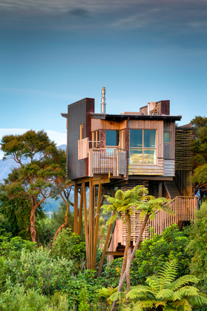 Treehouse in New Zealand Hapuku