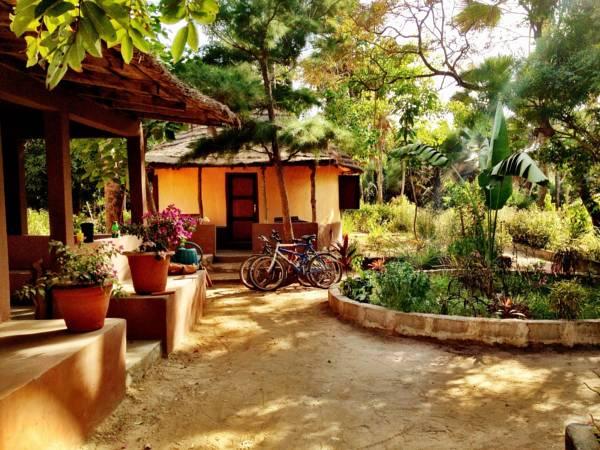 Walkway Gambia Nemasu ecolodge
