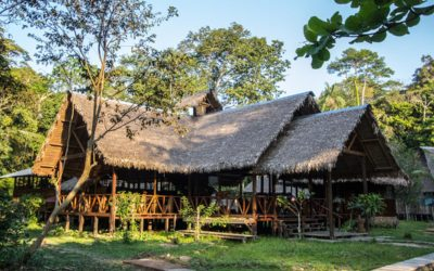 Thatched roof building at Explorer's Inn Peru